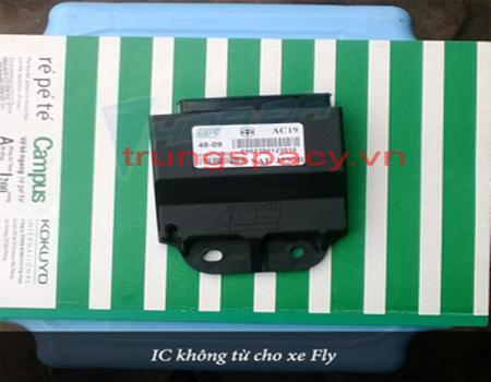 IC xe Fly